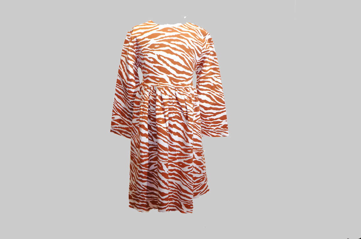 Burnt Orange Zebra Toddler Dress